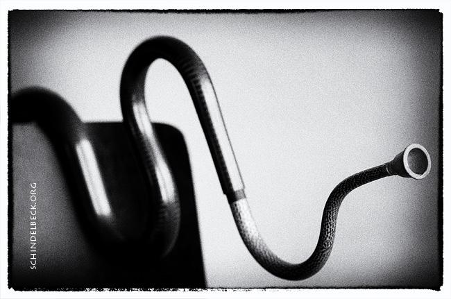 Serpent von Roland Vanecek